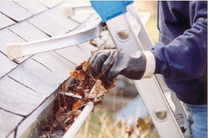 Gutter cleaning (NEW)