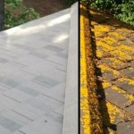 Portland-Gutter-and-Roof-Cleaning - Copy - Copy
