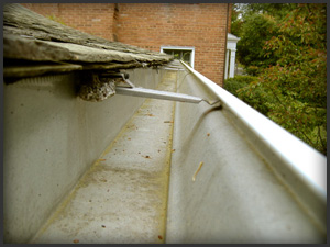 gutter_cleaning1