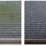 moss_removal_before_after